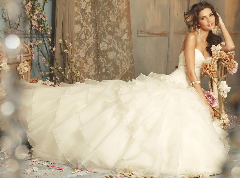 12 Romantic Wedding Dresses to Make Your Big Day Even More Dreamy (PHOTOS)
