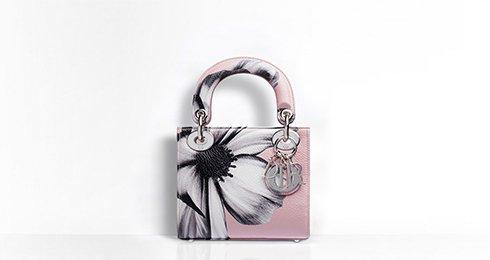 Fantastic Lady Dior Bag