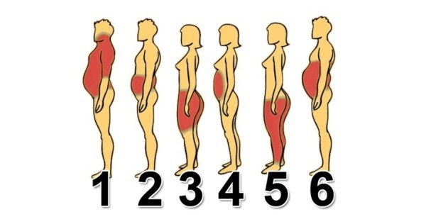 Knowing The Area Where Youre Getting Fat The Most Will Give You a Clue on How to Fix It