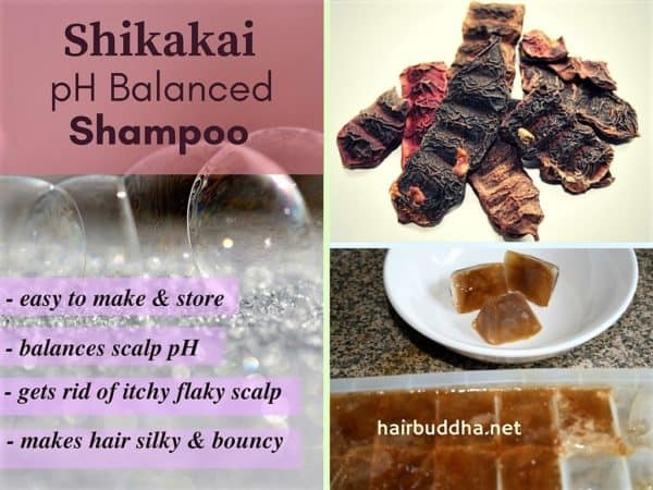 DIY Homemade Natural Anti Dandruff Shampoo