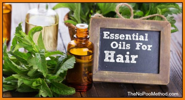 Five Natural Ingredients To Pint Your Hair Naturally