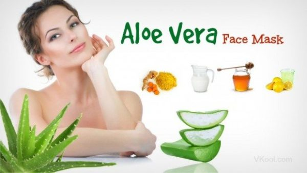 Aloe Vera Face Masks Recipes That You Can DIY At Your Own Home