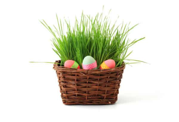 Creating the Perfect Easter Basket